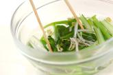 小松菜とモヤシの和え物の作り方2