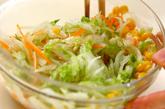 白菜のコールスローの作り方2