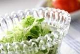 キャベツレタスのサラダ