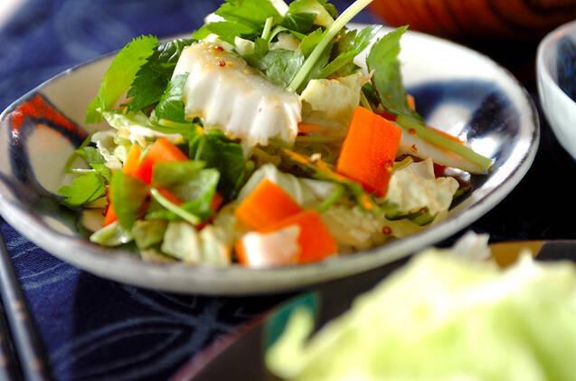 和柄のお皿に盛られた白菜サラダの粒マスタード和え