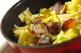 春キャベツとアサリのガーリック蒸しの作り方5