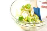 白菜のさっと漬けの作り方1