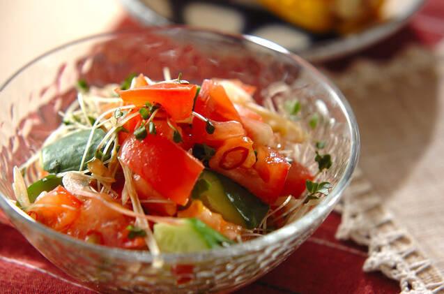 透明なお皿に盛られたきゅうりとトマトのサラダ