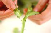 菊菜の白みそ汁の下準備1