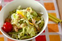 春キャベツのサラダ
