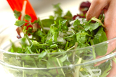 ハーブサラダの作り方1