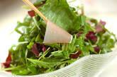 ハーブサラダの作り方6