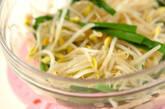 レンジ豆モヤシナムルの作り方4