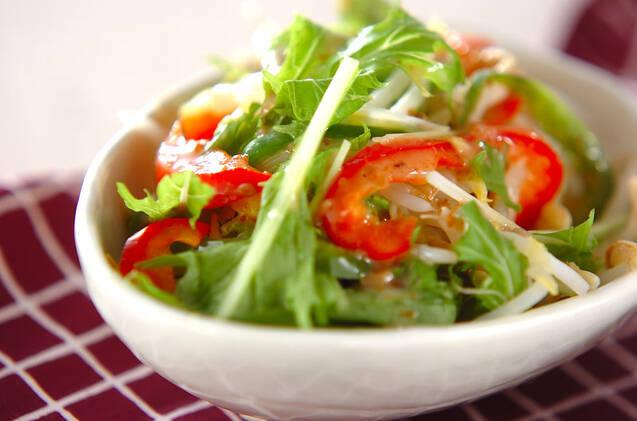 野菜をさっとゆでたモヤシのサラダ