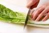 白菜のクリーム煮の作り方の手順1