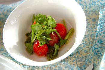 プチトマトの香菜サラダ
