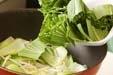 チンゲンサイの中華炒めの作り方1