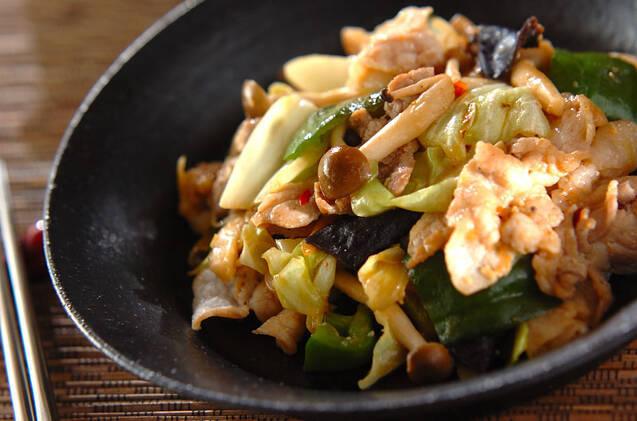 豚肉、キャベツ、ピーマンなどの野菜を味噌や豆板醤で炒めたピリ辛な炒め物。