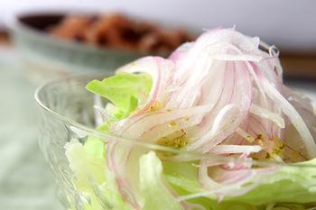 レタスと紫玉ネギサラダ