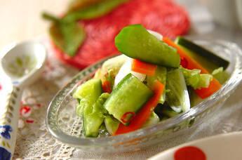 野菜の即席漬け