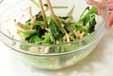 小松菜のからし和えの作り方1
