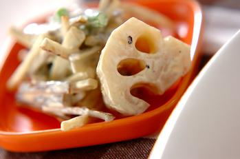 根菜マヨサラダ