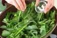 ナバナの塩炒めの作り方1