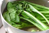 青菜のキムチ和えの下準備1