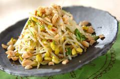 豆モヤシのエスニックナムル