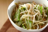 モヤシと白菜のサラダ