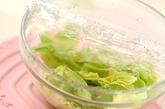蒸しキャベツとツナのサラダの作り方1