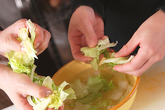 レタスのサラダの下準備1