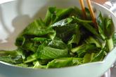 小松菜の炒め物の作り方1