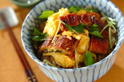 ウナギとふわふわ卵の丼 レシピ・作り方 | 【E・レシピ】料理のプロが ...