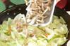春キャベツのカレー炒めの作り方の手順3