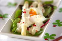 ホワイトアスパラと温泉卵のサラダ