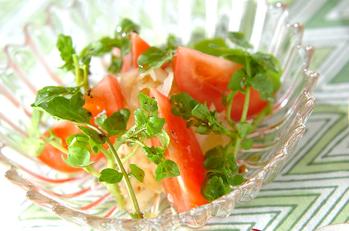トマトとクレソンのサラダ