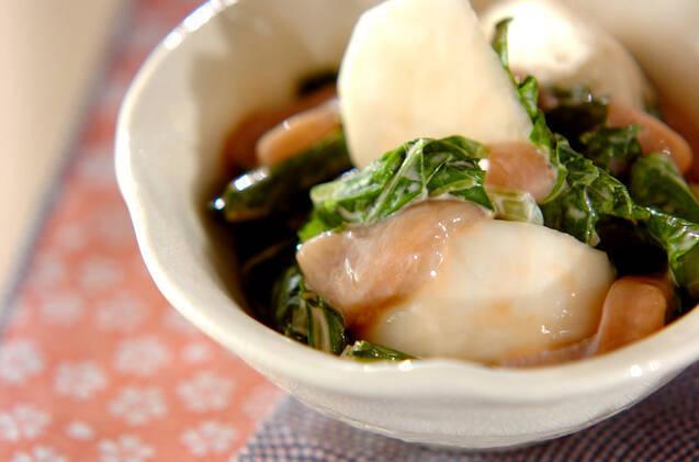 白い焼き物の皿に盛られた、カブの塩辛和え