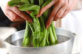 小松菜のネギ油がけの下準備1
