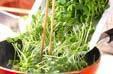 豆苗の炒め物の作り方2