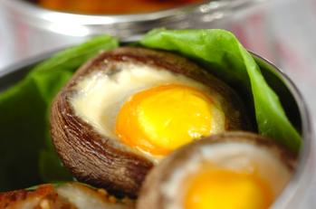 シイタケ卵