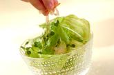 シャキシャキレタスのサラダの作り方2