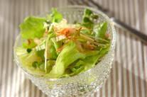 シャキシャキレタスのサラダ