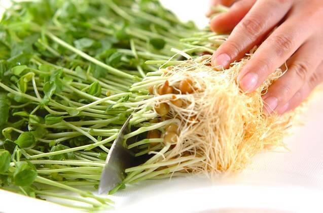 豆苗のお浸しの作り方の手順1