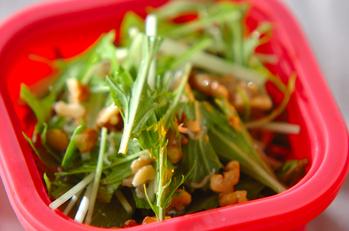 水菜のクルミジャコサラダ