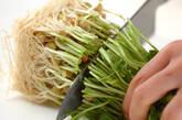 豆苗のユズコショウ炒めの下準備1