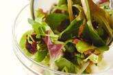 ベビーリーフのサラダの作り方5