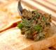 ゴママヨ納豆トーストの作り方1