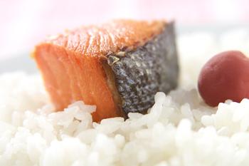 塩鮭とごはん