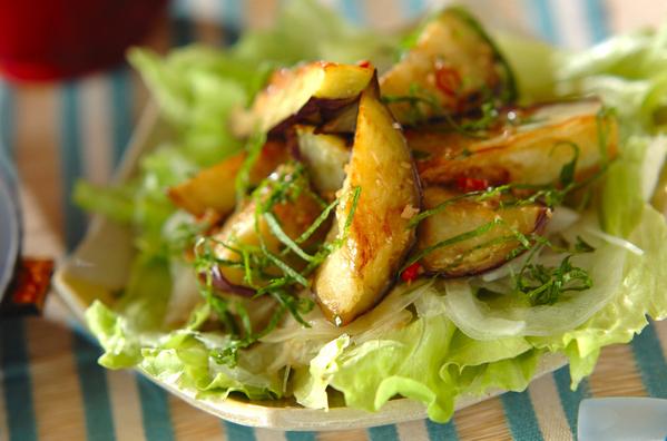 なすサラダの人気レシピ23選!焼いても揚げても生でもおいしい♩