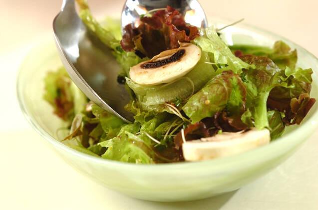 サニーレタスのサラダの作り方の手順5