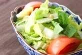 白菜のフレッシュサラダ