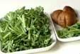 菊菜のお浸しの下準備1