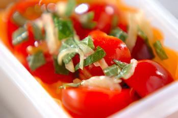 サッパリプチトマト