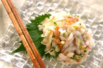 イカと香味野菜のサラダ